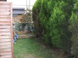 ローメンテナンスの庭にしてほしい!|ウッドデッキとオシャレ物置の設